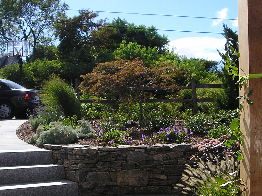 Clark Farms Services Residential Landscape Plum Point 0000s 0004 P9110803