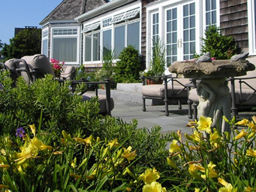 Portfolio Gallery 0000s 0000 Daylilies